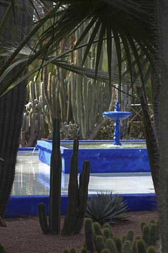 Kobaltblau im Jardin Majorelle