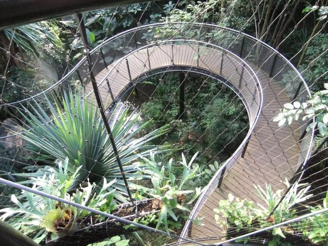 Treppenwege durch den Dschungel...