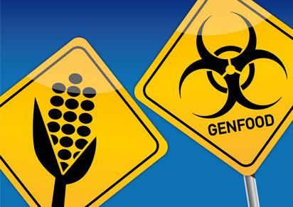 Genmais, Agro-Gentechnik