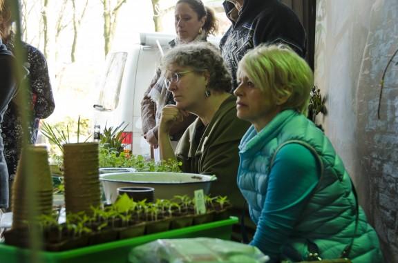 urban gardening Lesung mittendrin