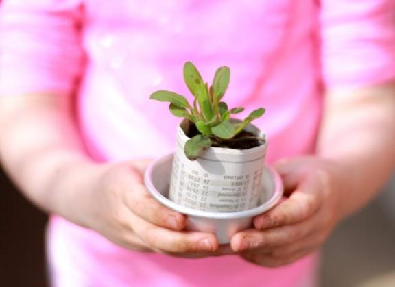 Pflanzentopf aus Zeitungspapier