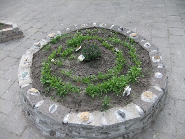 urbane Gemüseschnecke