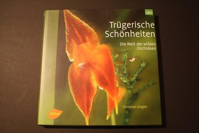 Die Welt der wilden Orchideen Rezension Jessica Klepgen