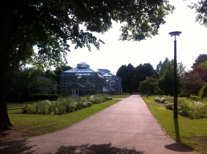 Weg botanischer Volkspark Pankow