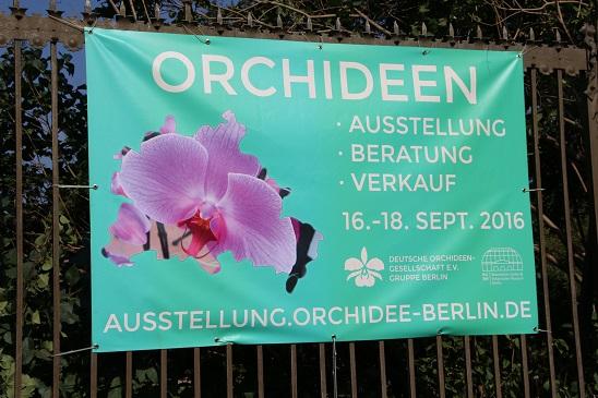 Orchideenausstellung Berlin 20165