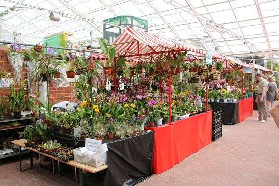 Die Verkaufsstände lockten zahlreiche Besucher an und machten es einem schwer, keine Orchidee mit nachhause zu nehmen. :-)