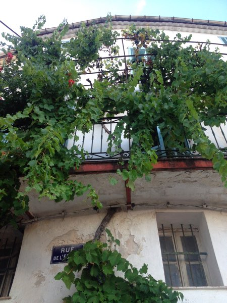 wein-an-balkon