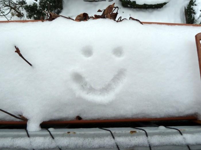 Ein Gesicht in einen Blumenkasten mit Schnee gemalt.
