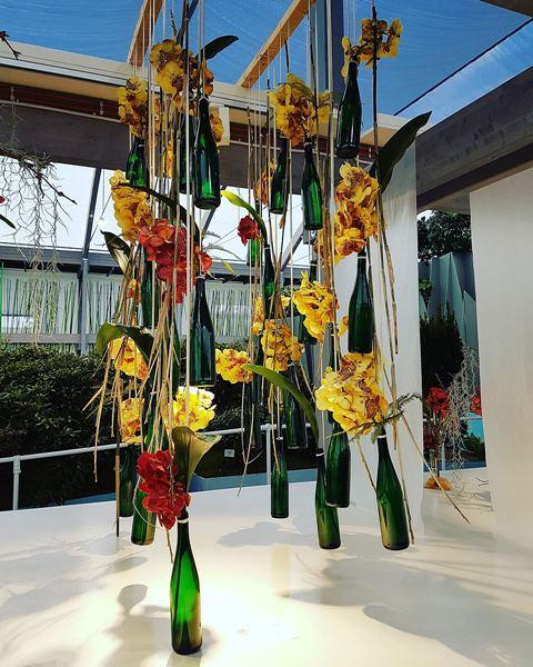 orchideenschau auf der iga berlin von seilbahnen und. Black Bedroom Furniture Sets. Home Design Ideas