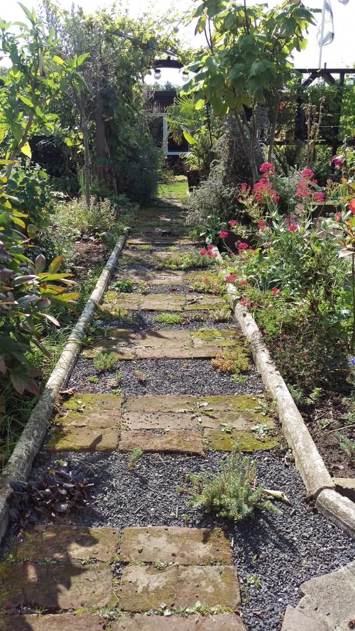 Es grünt....die Pflanzen im Weg fühlen sich scheinbar wohl. Noch haben sie nicht alles begrünt, aber sie sind eindeutig gewachsen