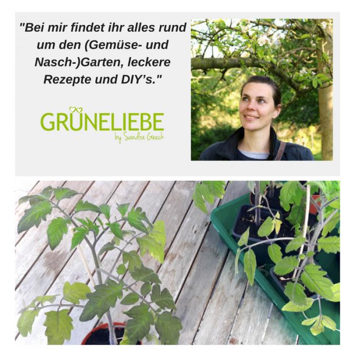GRÜNELIEBE.DE – Ein Blog für alle Garten- und Naturliebhaber! Bildrechte: Sandra Geeck