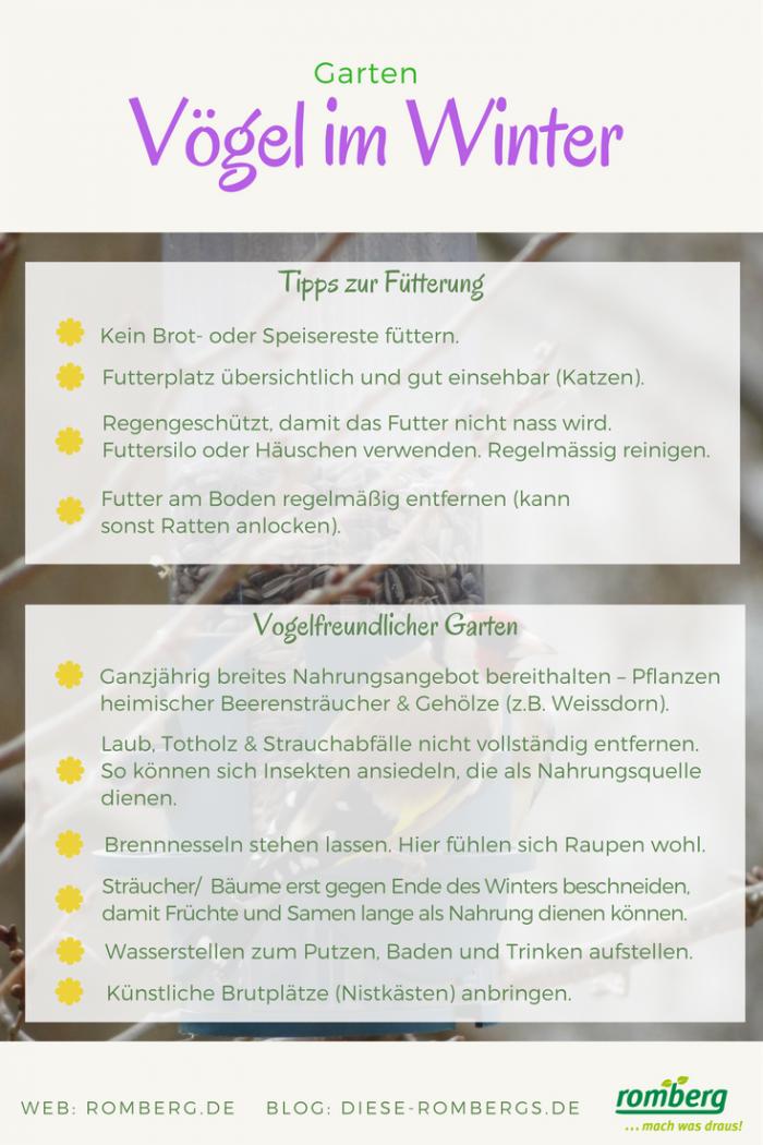 Romberg_Tipps_zur_Vogelfütterung_2018