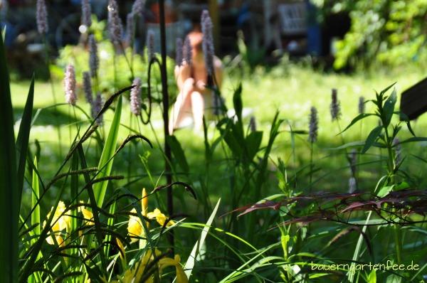 Der Bauerngartenfee-Garten vor einigen Jahren.