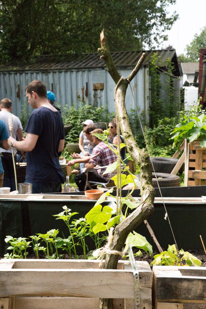 Gemeinsam viel erreichen: in Hamburg Wilhelmsburg entsteht mit Minitopia ein gemeinschaftliches Selbstversorgungsprojekt. Foto Uwe Wichmann