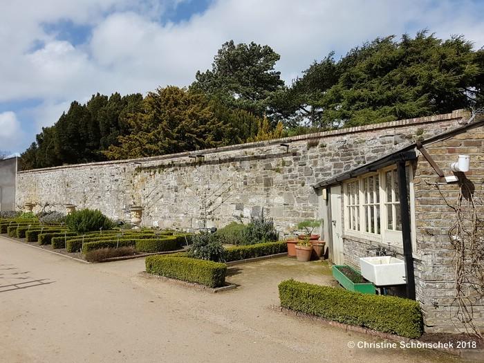 Spalier, Gartenmauer, Wandbegrünung, Obstgehölze