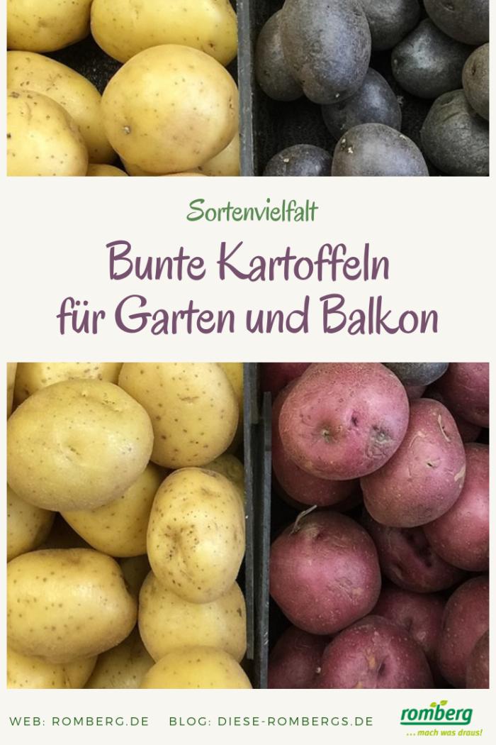 Melanie_Kartoffelvielfalt