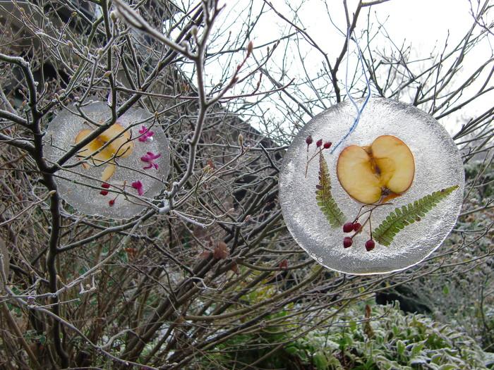 Wenn die Temperaturen unter null fallen, kannst Du Deinen garten mit schönen Eisbildern dekorieren. Foto:H.Kyrieleis/www.meisengezwitscher-blog.de