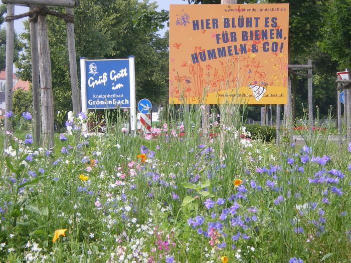 Wildblumen im Garten oder auf öffentlichen Flächen sehen nicht nur wunderschön aus, sondern bieten auch vielen Tierarten Nahrung und Schutz. Foto: Marcus Haseitl