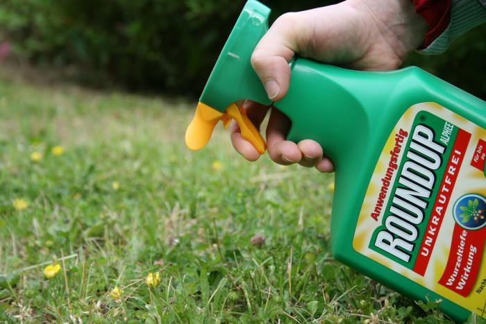 Nicht nur in der Landwirtschaft, auch in privaten Gärten werden Unkrautvernichtungsmittel eingesetzt. NABU/ E. Neuling