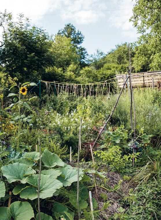 Garten nach Permakultur
