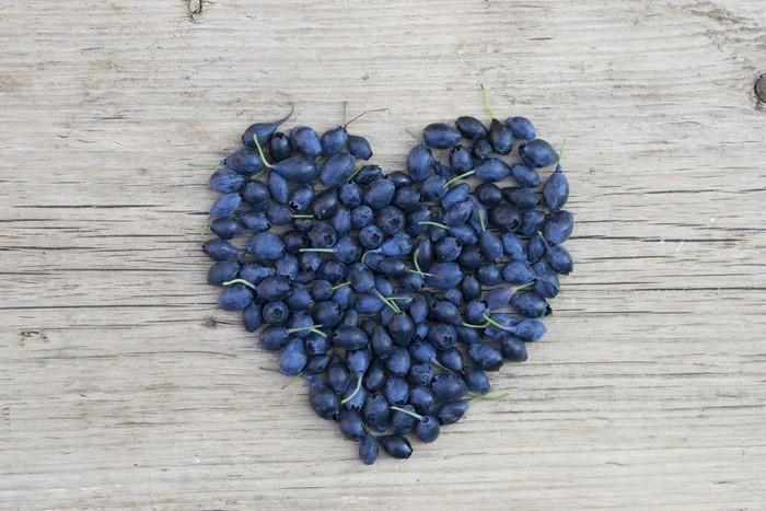 ein Herz für Blaubeeren