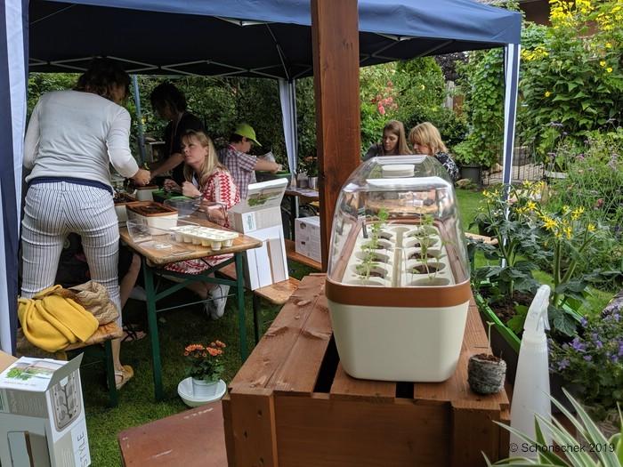 BoQube verzieren & bepflanzen, Workshop, Romberg